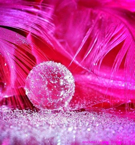 3d Pink Wallpapers by Pink Wallpapers 171 New 3d Wallpaper