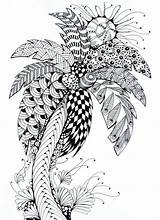 Palm Tree Zentangle Coloring Adult Leaves Trees Colouring sketch template