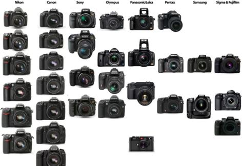 best dslr in early 2014 product reviews net