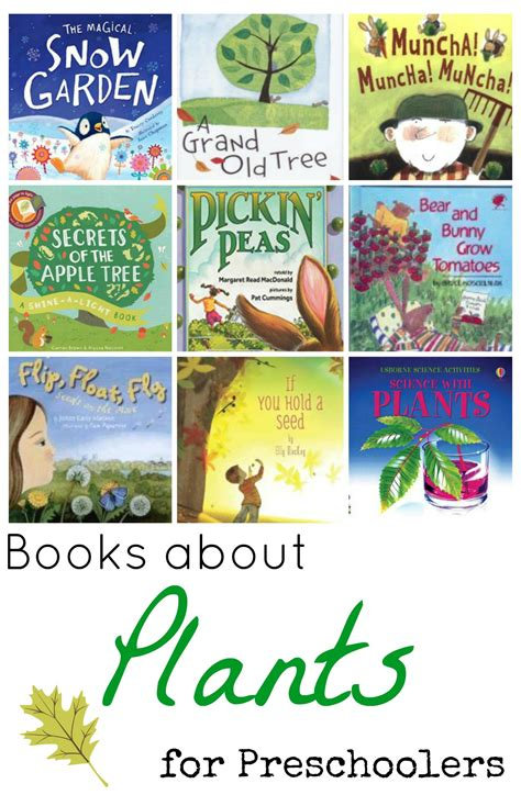 book on plants books about plants for preschoolers
