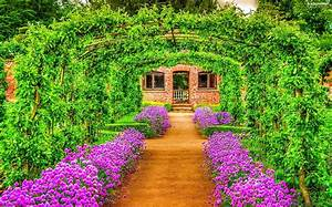Garden, Green, tunnel, Flowers