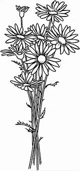 Daisy Coloring Flower Arrangement Flowers Drawing Simple Printable Colouring Sheets Patterns Spring Colornimbus Drawings Nature sketch template