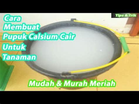 Pupuk Kalsium Bubuk cara pembuatan pupuk kalsium cair untuk tanaman