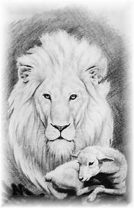 17 Best images about the Lion and the Lamb on Pinterest ...