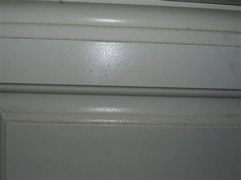 How To Clean Grease Buildup On Kitchen Cabinets by How To Easily Remove Grease Build Up From Your Cabinets