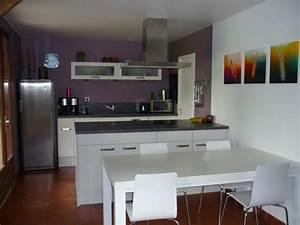 Cuisine Couleur Aubergine : cuisine couleur de cuisine peinture cuisine couleur id e ~ Premium-room.com Idées de Décoration