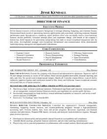 Executive Style Resume Template Financial Resume Template Resume Builder