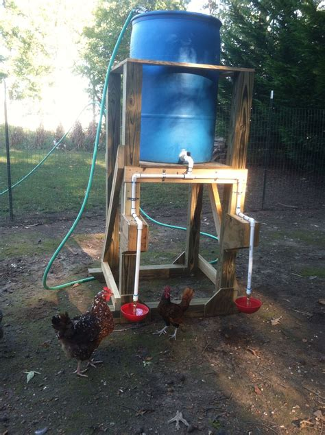 automatic chicken feeder automatic chicken waterer my hubs made for me
