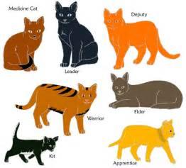 cat kit warrior cats shadow bloods by kit10kitten on deviantart