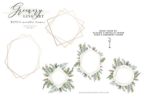 woodland baby watercolor greenery line png clipart tropical rustic