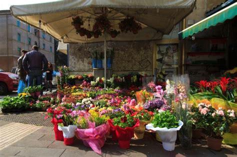 fiori in italia italia immagini e foto fiori di tutta l italia