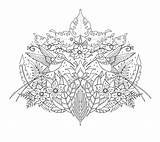 Coloring Pages Hummingbird sketch template