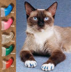cat claw covers soft claws soft paws soft claws nail caps for cats and