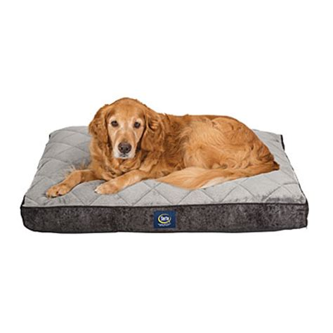 serta 174 quilted pillow top pet bed big lots