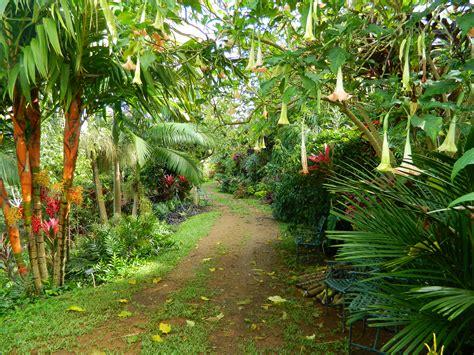 kauai botanical gardens kauai botanical gardens princeville garden ftempo