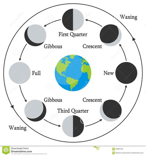 Cartoon Earth With Moon Phases Stock Vector - Illustration ...