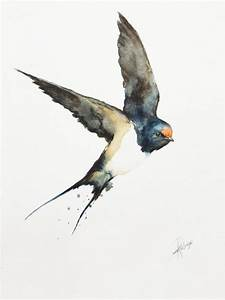 230 best Swallows, Martins & Swifts images on Pinterest ...