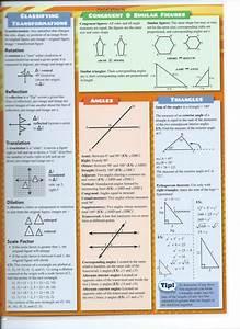 8th Grade Study Guide