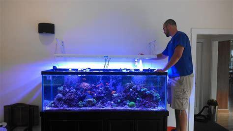 180 Gal Aquarium Makeover And Maintenance Part 3