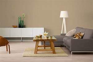 Graues Sofa Kombinieren : wandfarbe latte macchiato der modern kaffeegeschmack ~ Michelbontemps.com Haus und Dekorationen