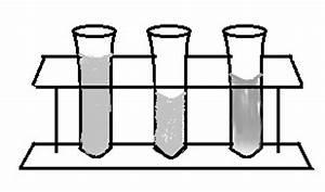 Test Tubes Diagram | www.pixshark.com - Images Galleries ...