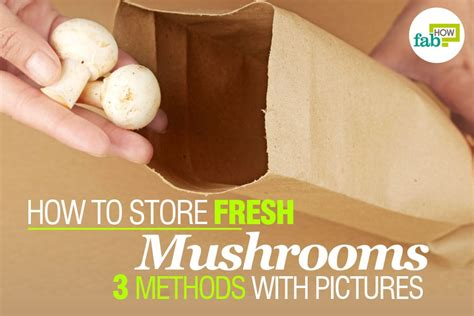 how to store mushrooms how to store fresh mushrooms 3 methods with pictures fab how