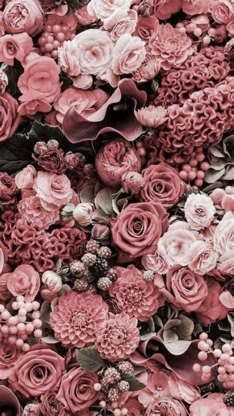 flowers #pink   Trendy flowers, Flower phone wallpaper ...