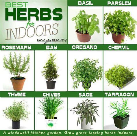 Best Herbs To Grow Inside  Herb Garden Pinterest
