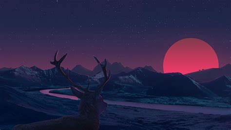 Anime Sunset Wallpaper - deer staring at sunset anime hd 2k wallpaper