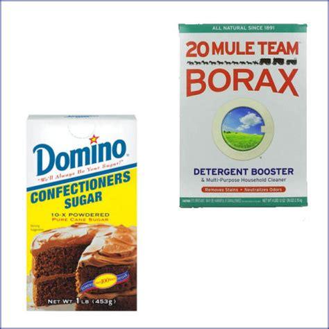 borax ant killers  test    homemade