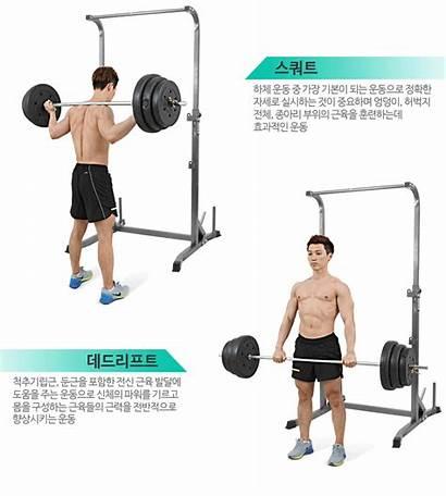Squat Rack Fitness Equipment Weight Lifting Crossfit