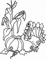 Coloring Pages Thanksgiving Turkey Harvest Printable Pumpkin Hardy Ed Sad Fall Printables Sheets Bestcoloringpagesforkids Fruit Don Printactivities Cardinal Pussy Library sketch template