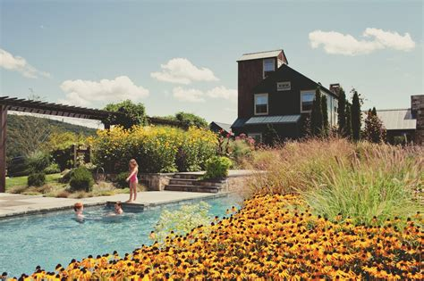 country swim the most luxurious swimming pools lonny