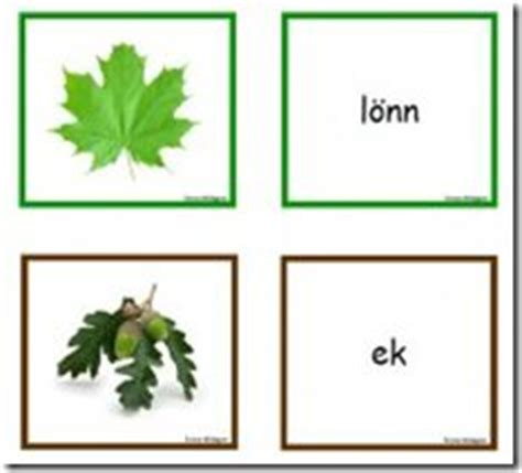children  label  parts   plant  super