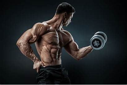 Muscle Training Mass Frequency