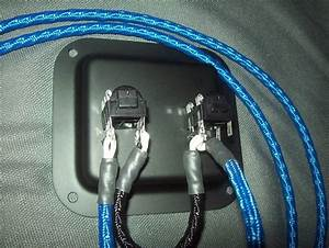 Earcandy 2x10 2x12 Guitar Speaker High Definition Wiring