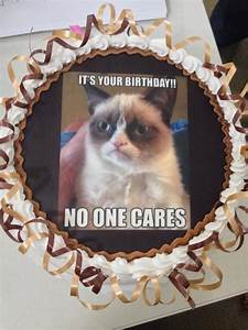 Pin Grumpy Cat Birthday Funny Pictures on Pinterest