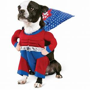 costume ideas for dogs festival around the world