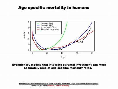 Evolution Span Aging Ppt Powerpoint Presentation Evolutionary
