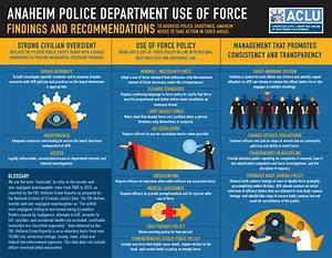 Anaheim Police Department Use Of Force Report 2017