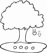 Coloring Tree Bridge Apple Terabithia Pages Trees Swing sketch template