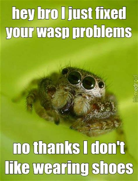 Spider Bro Meme - memedroid images tagged as wasp page 2