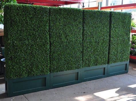 great for creating an outdoor garden effect indoors