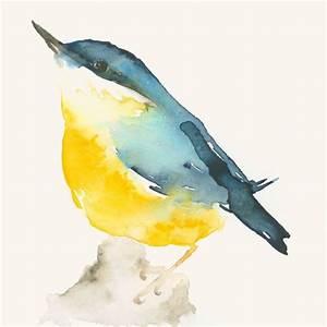 Oiseau Jaune Et Bleu : oiseau jaune et bleu oiseaux jaunes jaune et oiseaux ~ Melissatoandfro.com Idées de Décoration