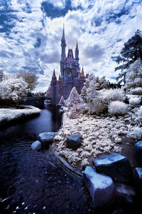 walt disney world winter wonderland lake buena vista