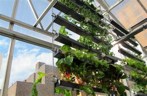 top tips  greenhouse garden growing love  garden
