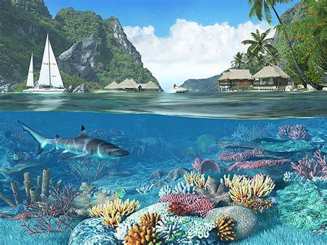 screensavers caribbean islands 3d fish screensaver lagoon