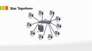 Understanding Network Topologies