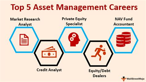 asset management careers list  top  job options