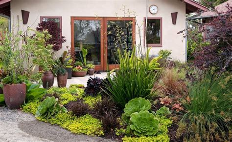 gardencrest contemporary landscape san diego by